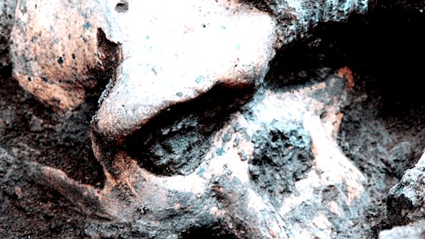 Las Especies Homo - paleoantropologia - 20131019 STP002 2