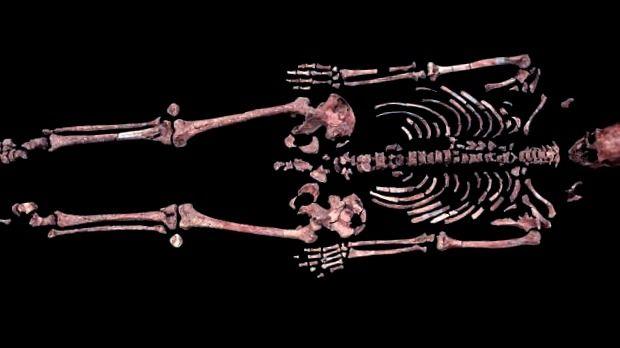 El Hombre de Kennewick no era de Ascendencia Caucásica - paleoantropologia - Kennewick 620