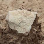 Descubiertas las herramientas de piedra más antiguas - paleoantropologia - StoneTool 310 150x150