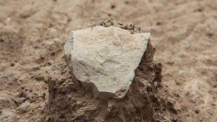 Descubiertas las herramientas de piedra más antiguas - paleoantropologia - StoneTool 310