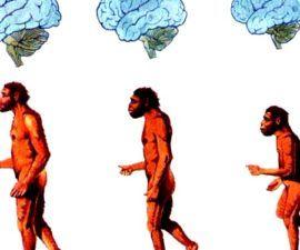 ¿Qué es el Hinduismo? - antropologia-cultural - antropologia cultural barbara miller pdf gratis 270x225