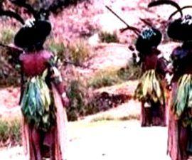La Teoria de los Sistemas Mundiales - antropologia-cultural - antropologia cultural de bolivia 270x225