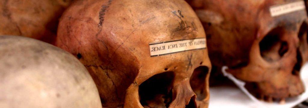 El Canibalismo desde la Perspectiva Antropológica - antropologia-cultural - antropologia cultural de marvin harris pdf 1024x359