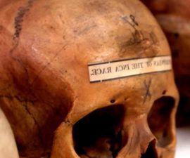 El Canibalismo desde la Perspectiva Antropológica - antropologia-cultural - antropologia cultural de marvin harris pdf 270x225
