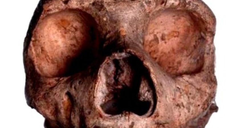 La Guerra Como Objeto de Estudio Antropológico - antropologia-cultural - antropologia cultural en bolivia 860x450