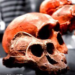 """¿Quién fue """"Lucy""""?Hechos rápidos sobre un ancestro humano temprano"""