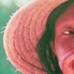 La política de los pueblos originarios en América Latina