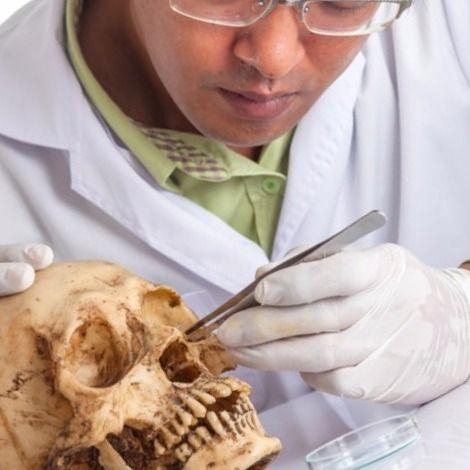 Antropologia forense una de las ramas de la antropologia general