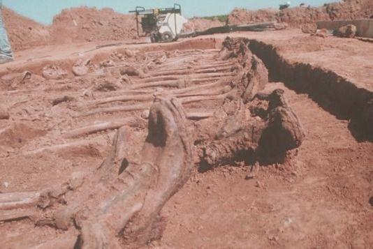 Conoce a los amorreos y al hombre numerado como 666 - antropologia-arqueologica - antropologia medieval caracteristicas