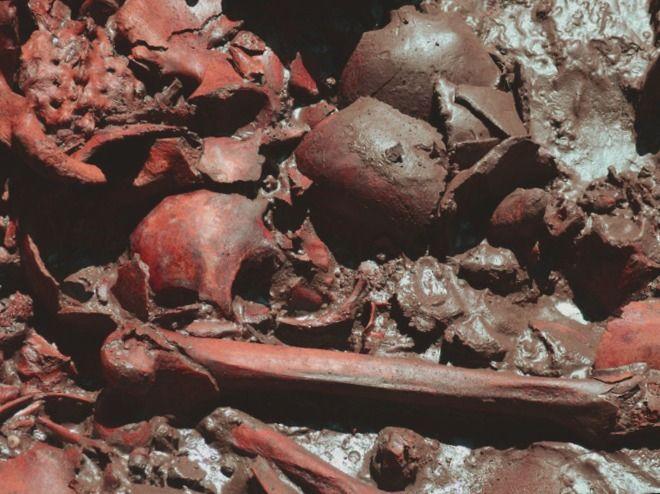¿Qué se necesita para obtener un título en línea en Forenses? - antropologia-de-la-educacion - antropologia medieval yahoo