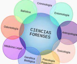 las ciencias forenses interdisciplinarias