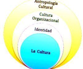Cultura organizacional es parte importante del estudio empresarial en la actualidad