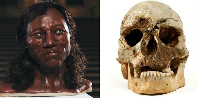 el hombre de chedar es el homo sapiens mas antiguo de Inglaterra