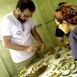 El equipo de antropologia forense es un equipo de primer nivel que estudia los casos de asesinato del fujimorismo