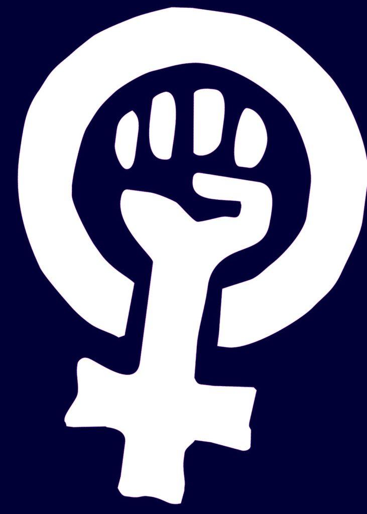 la antropologia feminista una rama interesante
