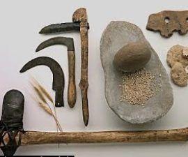 Entendiendo las sociedades horticultoras Definición, historia y Resumen - antropologia-social, antropologia-arqueologica - herramientas de las sociedades horticultoras 1 270x225