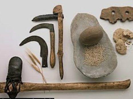 Entendiendo las sociedades horticultoras Definición, historia y Resumen - antropologia-social, antropologia-arqueologica - herramientas de las sociedades horticultoras 1 466x349