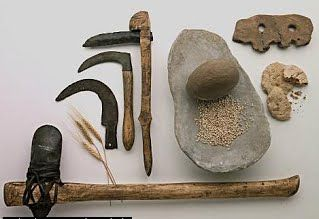 Entendiendo las sociedades horticultoras Definición, historia y Resumen - antropologia-social, antropologia-arqueologica - herramientas de las sociedades horticultoras 1