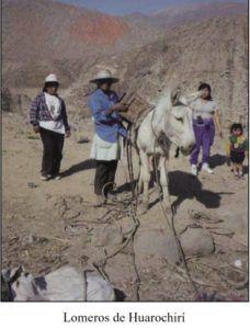 Trashumancia: Estrategia de Adaptación Cultural al Medio Ambiente - antropologia-cultural - lomeros 228x300
