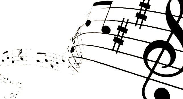 musica y gustos musicales naturaleza vs cultura