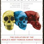 Patología Forense Contra Antropología Forense - antropologia-forense-2 - readframes 150x150