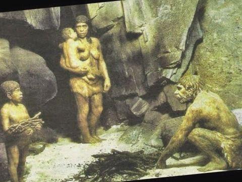 division del trabajo y roles de genero entre los neandertales