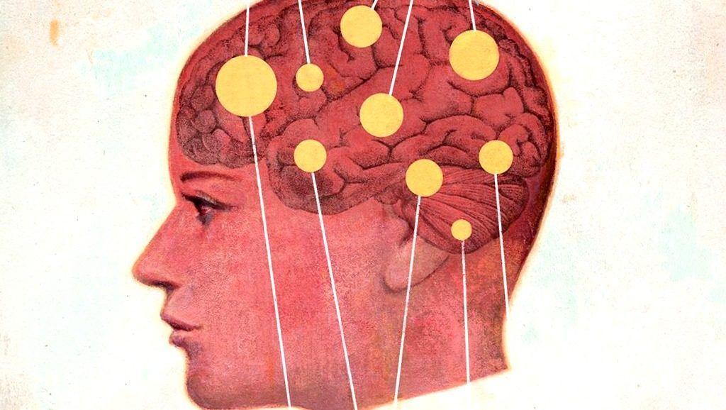 dentro de la cabeza de hombres y mujeres