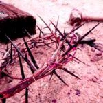 teologia forense